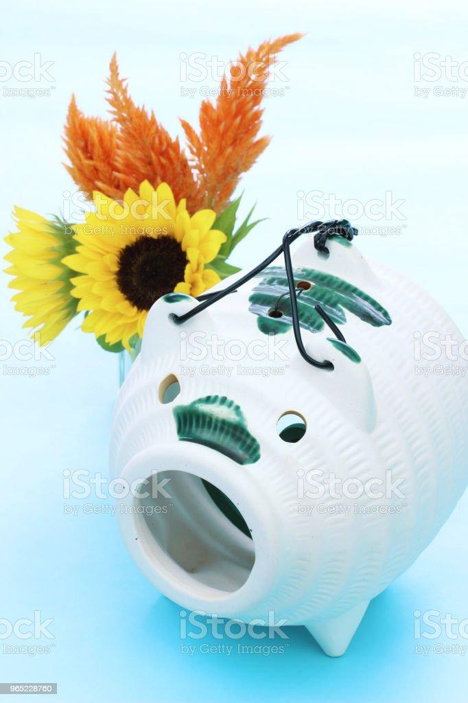 mosquito  coil and sunflower zbiór zdjęć royalty-free