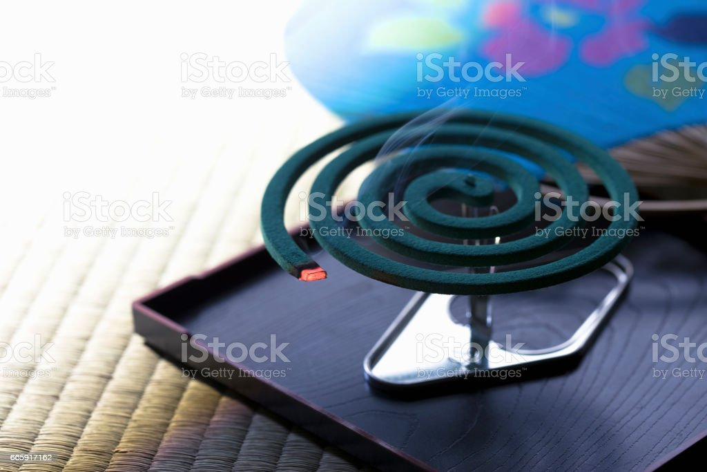 Mosquito coil foto stock royalty-free