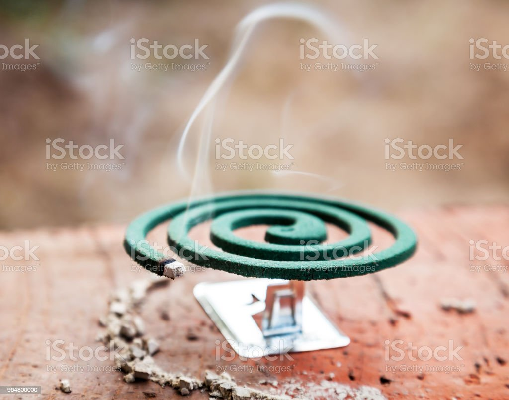 Mosquito coil royalty-free stock photo
