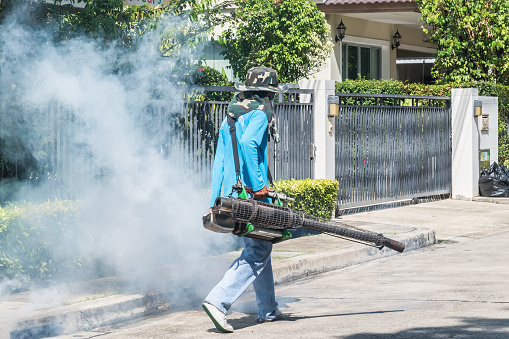 Mosquito fogging spray and insecticide pest control for stoping insect breeding and preventing malaria, dengue epidemic fever disease with worker spraying chemical repellent smoke