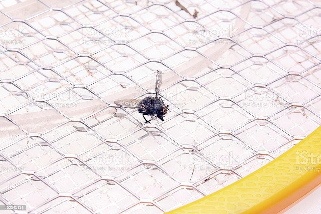 Mosquito killer royalty-free stock photo