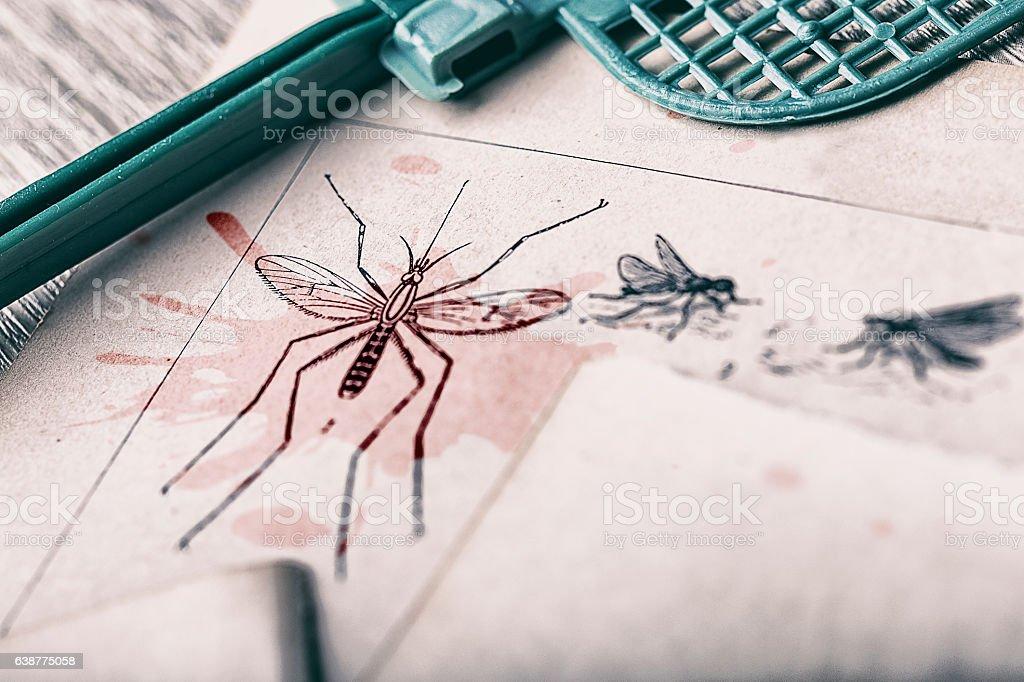 Mosquito pest control stock photo