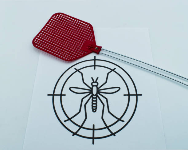 Mosquito search icon with fly swatter isolated on white background picture id1183118245?b=1&k=6&m=1183118245&s=612x612&w=0&h=jvastbu5i5djyeh65hlqrmvetv9pqu4o7iep8dx lsy=