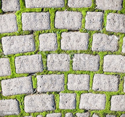 Photographed from directly above, a pattern of small cobblestones surrounded by moss growth.