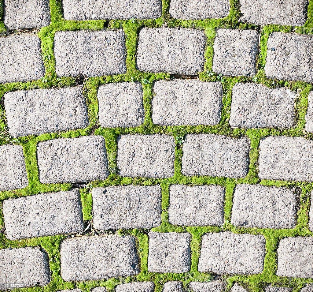 Moss Cobble Pattern stock photo