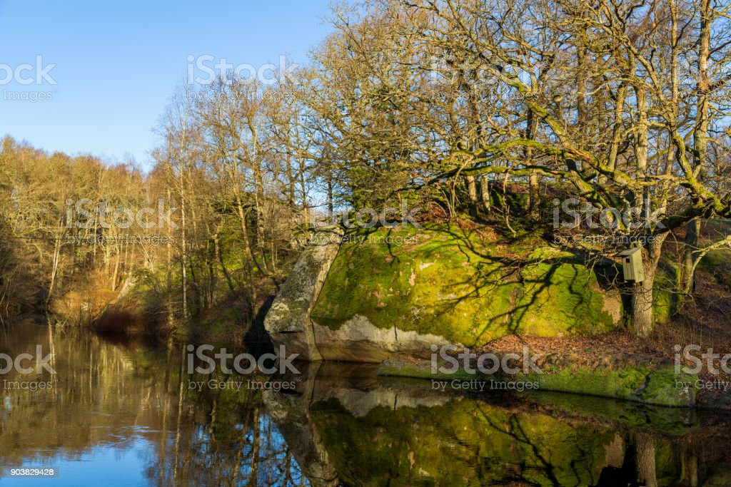 Moss covered boulder stock photo