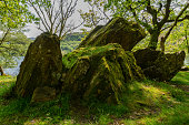 Moss covered boulders on the shores of lake dinas north wales