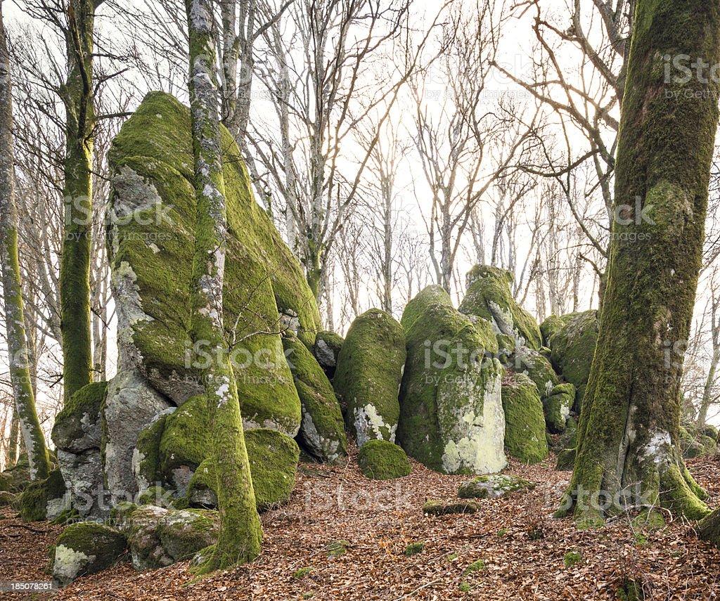 Moss covered giant rocks,  Monte Cimino, Viterbo province, Lazio Italy royalty-free stock photo