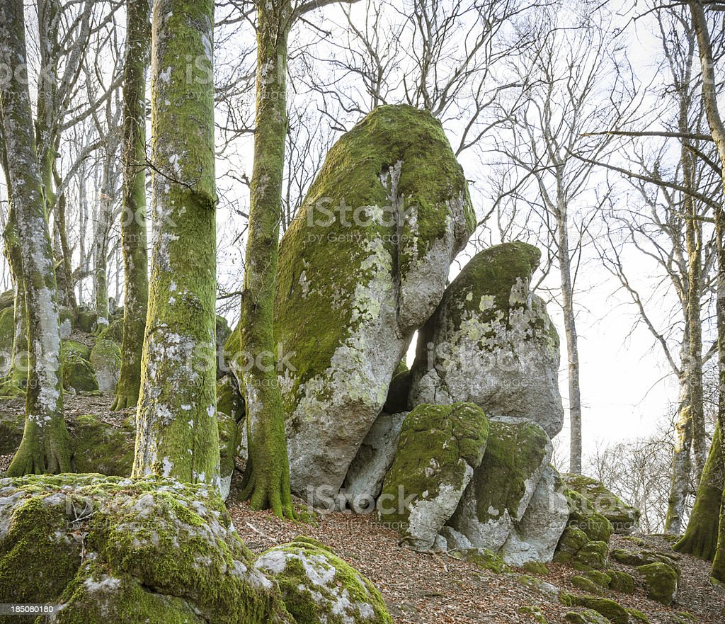 Moss covered giant rocks,  Monte Cimino, Viterbo province, Lazio Italy royalty-free stock photo