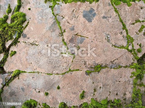 An abstract background of a forest rock covered with lichen and green moss as a frame.