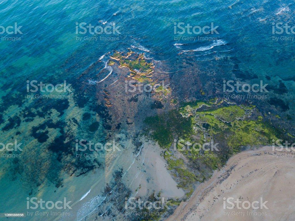 Mousse dans la côte de la plage - Photo