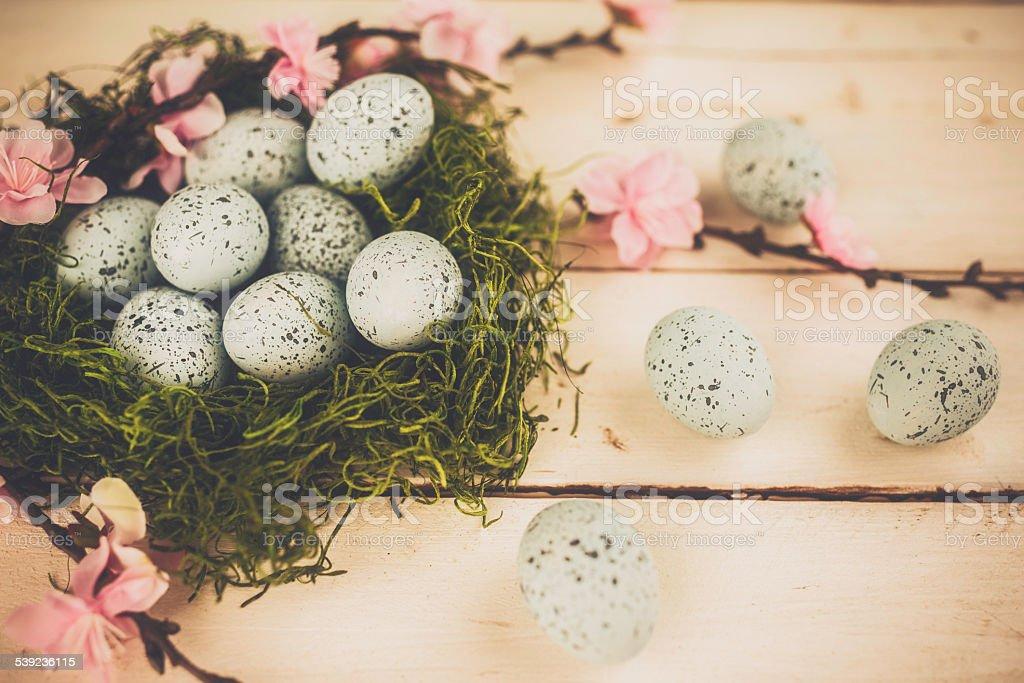 Moss Nido de Pájaro de manantial huevos y cerezos en flor. Arreglo de Pascua. foto de stock libre de derechos