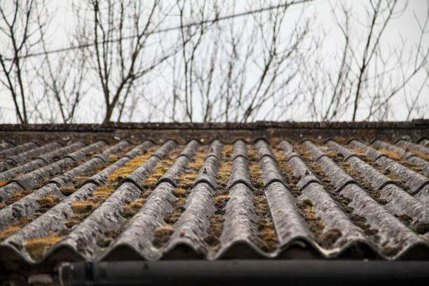 moos auf dem dach des currugated - dachformen stock-fotos und bilder
