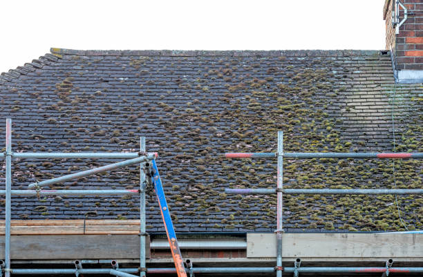 Moos auf einem Wohn Dach mit scafolding – Foto