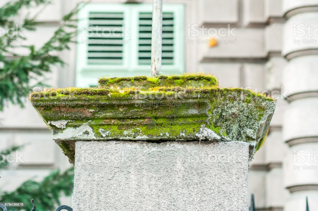 Moss on concrete pillar fence. royalty-free stock photo