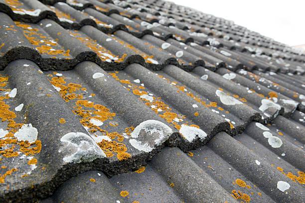 Moss auf alten Dach – Foto