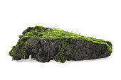 Moss on pile of dirt isolated on a white background