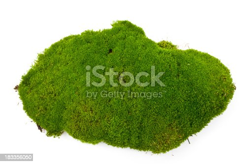 Dug up soil with moss on white background.
