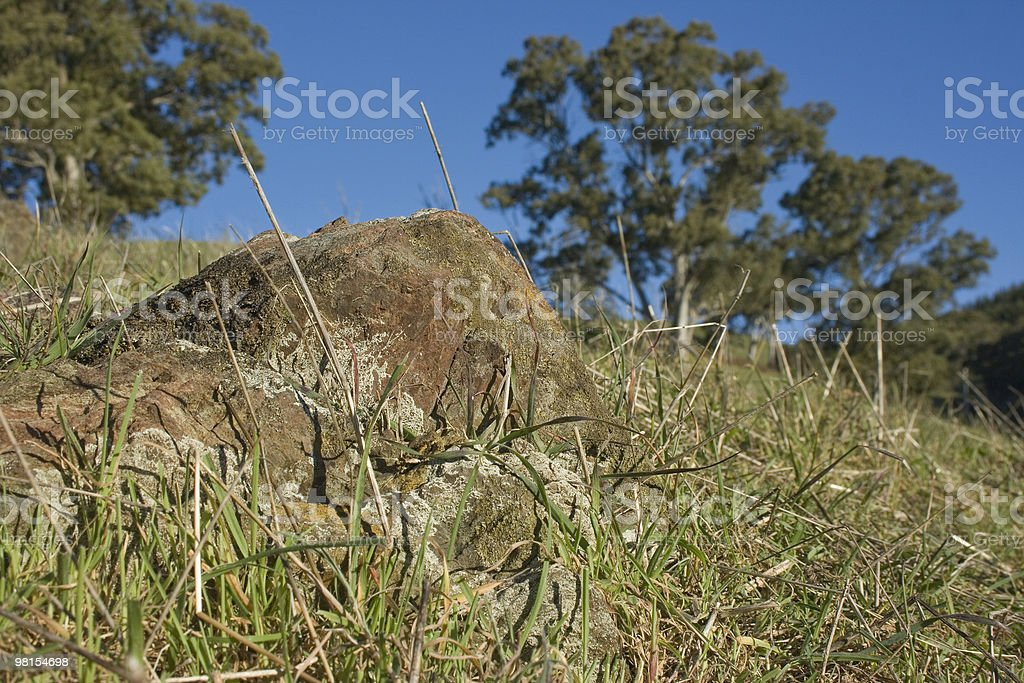 Moss Rock royalty-free stock photo