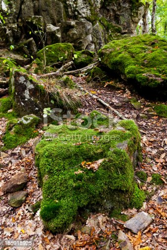moss-grown boulders of Rock Devil finger - landmark in shapsugskaya anomalous zone in caucasus mountains