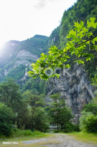 Very nice view of the mountains and forests of Abkhazia