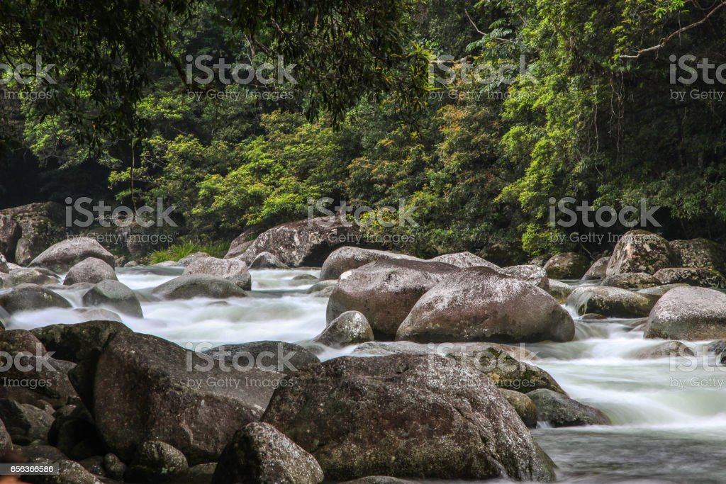 Mossman Gorge im Daintree Nationalpark – Foto