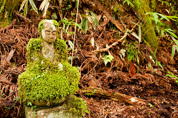 mossy bodhisattva statue - mahroch stock pictures, royalty-free photos & images