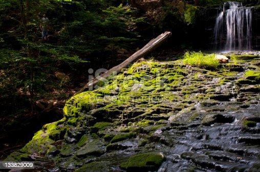 istock Mossy Cascade 133829009