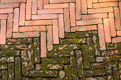 Mossy diagonal pattern of brick pavement in a herringbone style for background, Old orange bricks tiled floor with zigzag pattern. Old peeling chevron zigzag diagonal brickwork texture background.