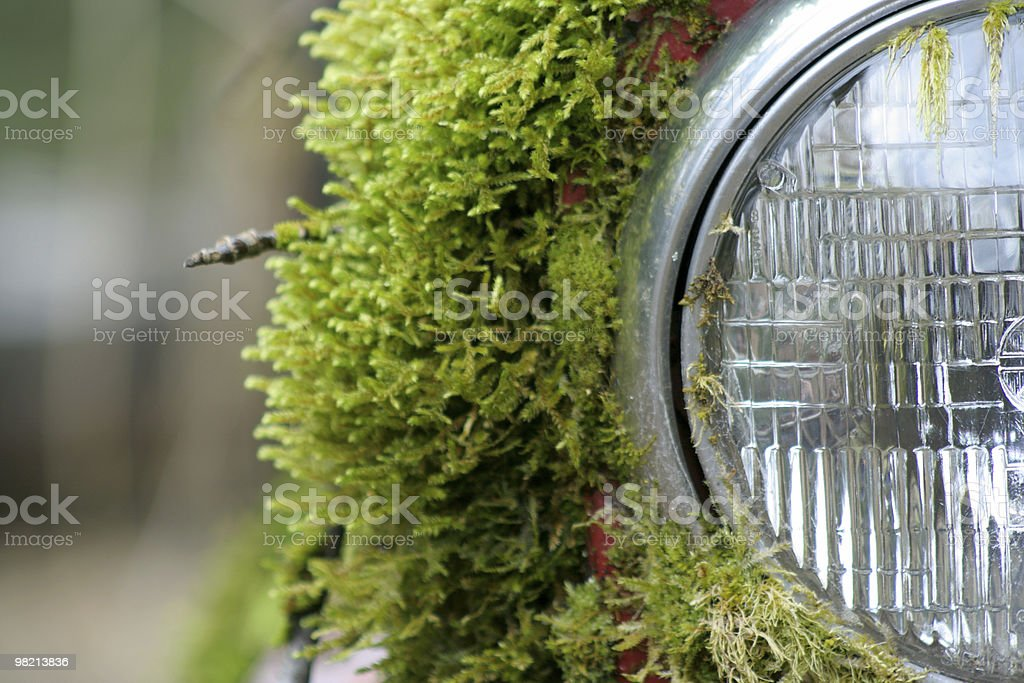 Mossy Faro foto stock royalty-free