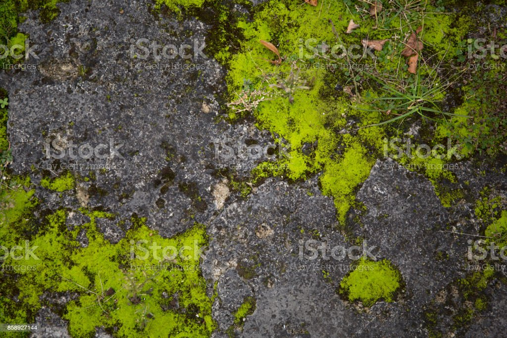 Mossy old rough stone surface texture royalty-free stock photo