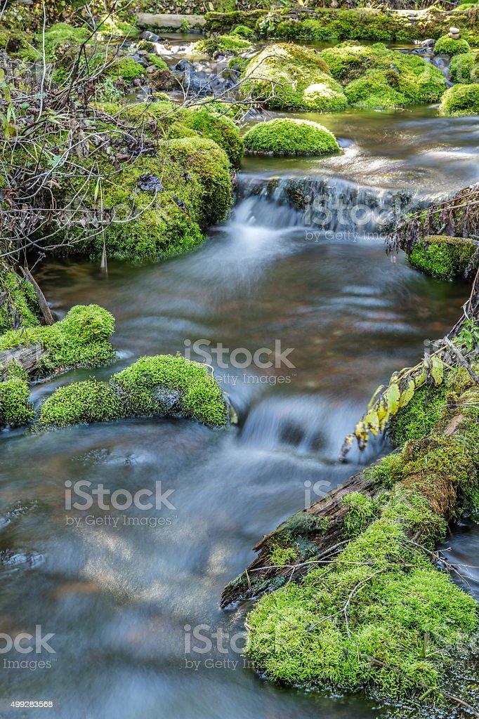 Mossy Rock Stream stock photo