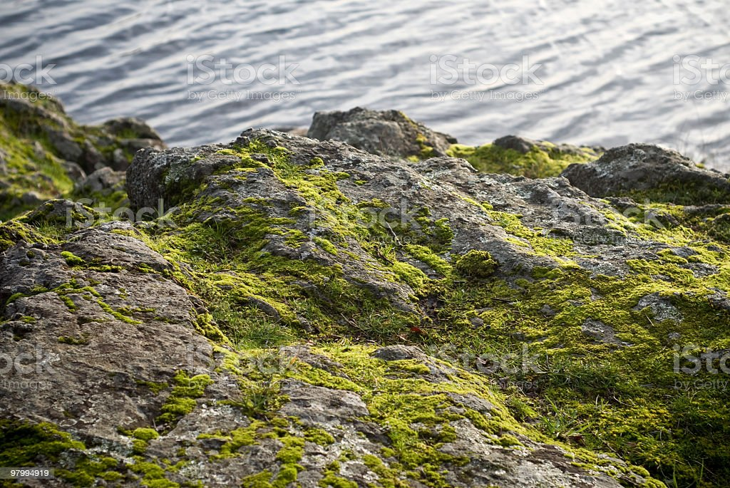 Mossy Rocks royalty-free stock photo