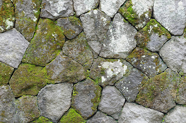 mossy rustic stone wall stock photo