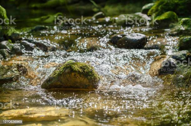 Photo of Mossy stone in a rushing mountain stream