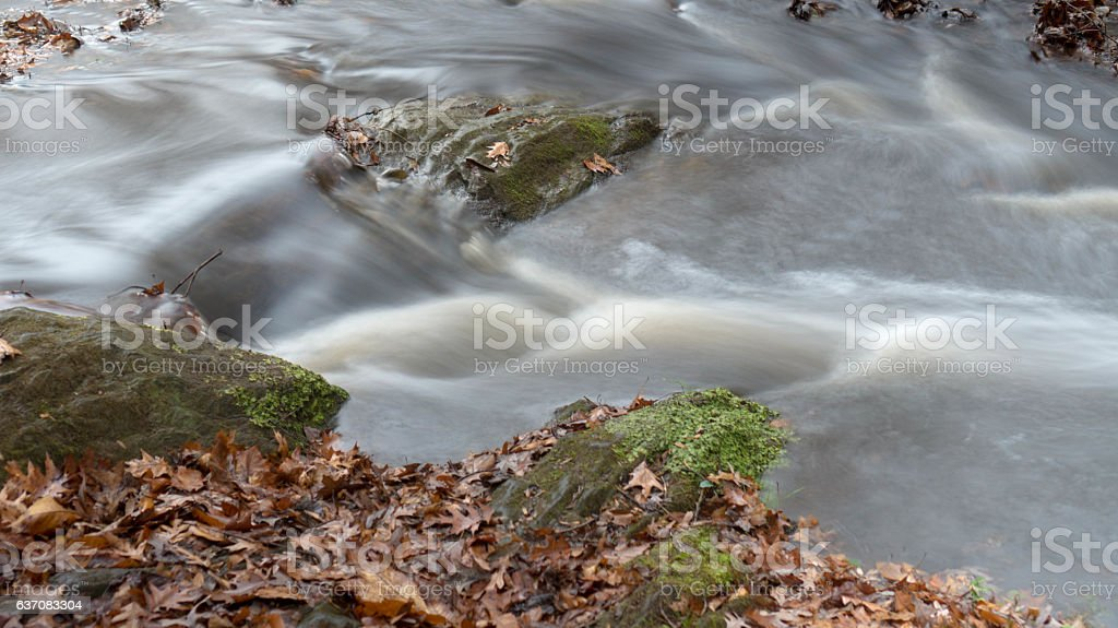 Mossy Stream Water stock photo