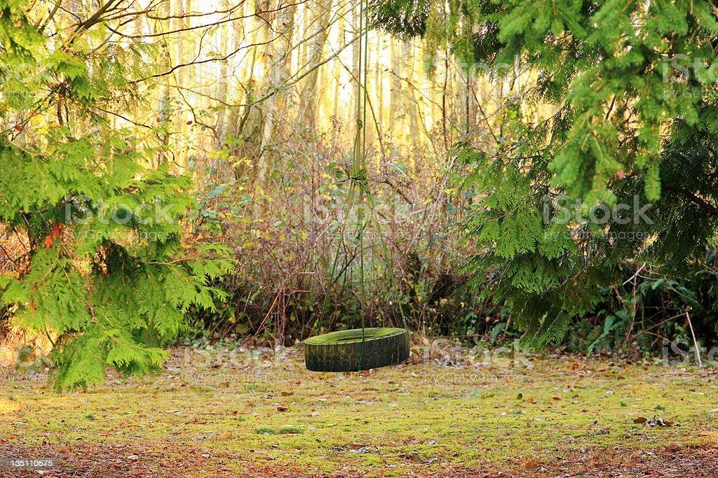 Mossy Tire Swing Among Trees stock photo