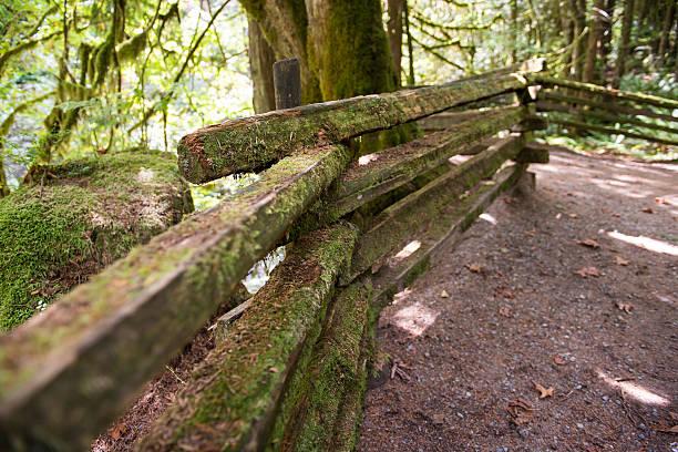Mossy Trail fence, Cliff Falls, Kanaka Creek stock photo