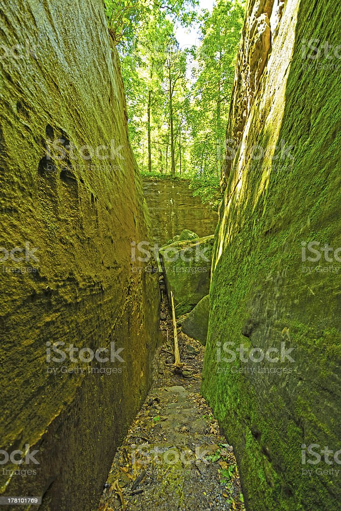 Mossy trail through a natural rock ravine stock photo
