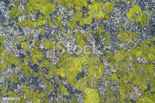 close up concrete wall texture