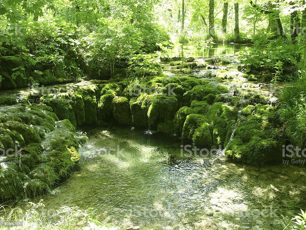 Mossy Waterfall 01 royalty-free stock photo