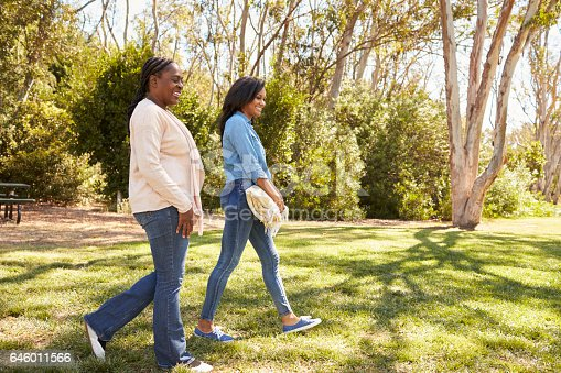 istock Mother And Adult Daughter Going For Picnic In Park Together 646011566