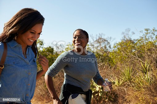 904170246 istock photo Mother And Adult Daughter Hiking Outdoors In Countryside 646020014