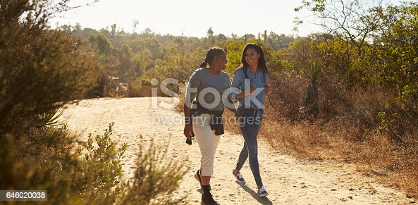 istock Mother And Adult Daughter Hiking Outdoors In Countryside 646020038