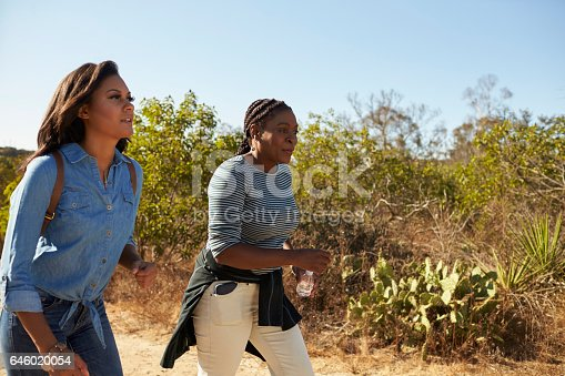 904170246 istock photo Mother And Adult Daughter Hiking Outdoors In Countryside 646020054