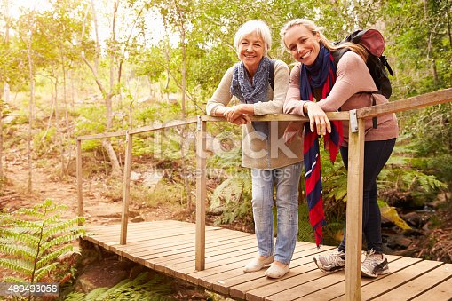 istock Mother and adult daughter on a bridge in a forest 489493056