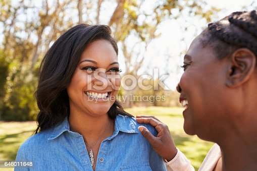 istock Mother And Adult Daughter Talking In Park Together 646011648