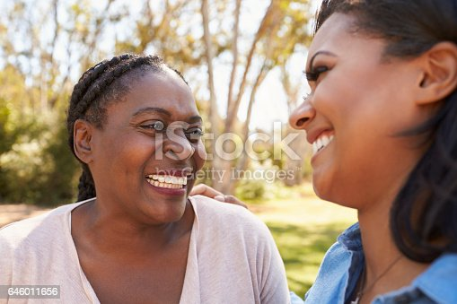 istock Mother And Adult Daughter Talking In Park Together 646011656