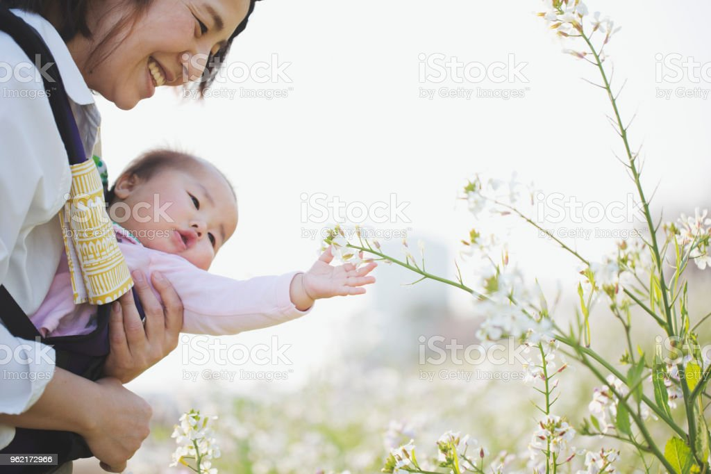 Mother and baby girl relaxed in the flower field stock photo