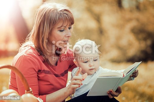 istock Mother and baby on a picnic 640349426